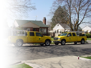 Aspen Trucks in Front of a House